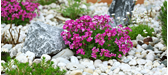 A Guide to Decorative Stone for Gardens